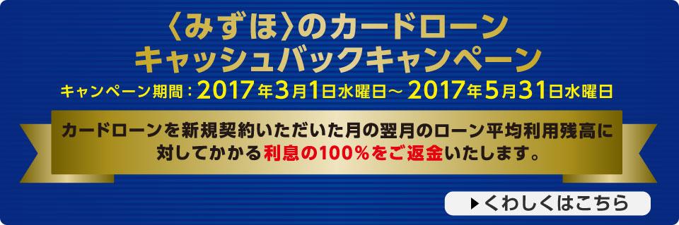 i_index_cardloan2017.jpg